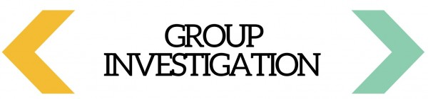 group-investigation